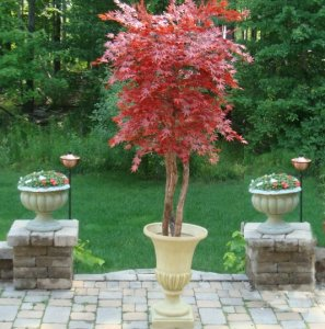 Custom Made Burgundy Polyblend Outdoor Japanese Maple Tree