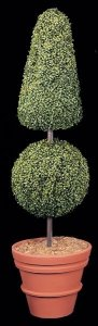 6' Tall Custom Made Life Like Plastic Boxwood Topiary