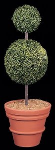 Custom Made 4' Plastic Boxwood Topiary