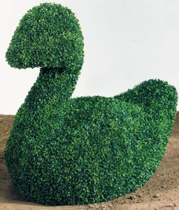 Faux Life Like Plastic Mini Boxwood Swan