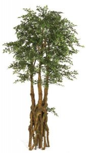 7' Life Like Faux Ming Aralia Tree