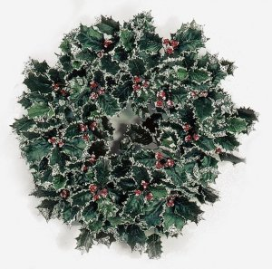 "18"" Snowy Holly Wreath"