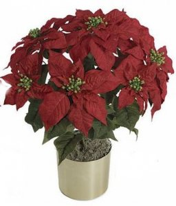 "P-60215 23"" Poinsettia Bush - 42 Leaves - 7 Red Flowers"