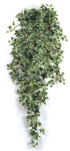 Faux Life Like Hanging Variegated Sage Ivy Bush