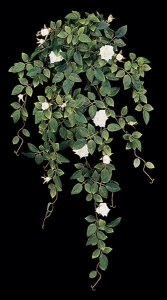 Diamond Rose Vine Sold in a set of 6 White