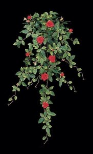 Diamond Rose Vine Sold in a set of 6-Red