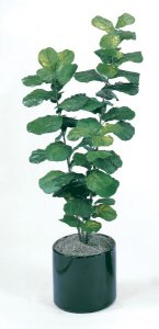 Faux Life Like 5.5' Fiddle Leaf Floor Home Accent Plant -Fire Retardant