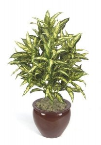 "46"" Faux Life Like Chinese Evergreen House Plants"
