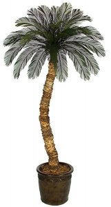 4' -12' Tall  Custom Made Cycas Palm Tree 36 Tutone Green Fronds Larger Palm Head 6' Wide  Natural Trunk