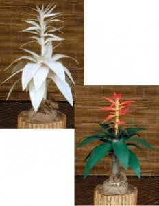 2' Canvas Flame Bromeliad Plant in Painted or Natural Colors