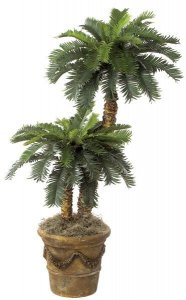 W-3095 3' Sago and 5' Sago Palm Set with Natural Aloe Trunks