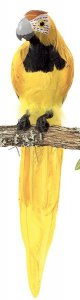 "20"" Macaw Bird Tutone Grey Beak Yellow"