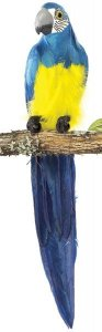 "20"" Macaw Bird Tutone Grey Beak Blue"