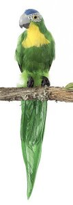 "20"" Macaw Bird Tutone Grey Beak Green"