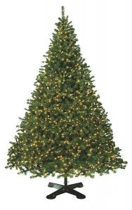 12'- 30' Tall Giant Virginia Pine Christmas  Tree  Comes with your choice of lights or no lights