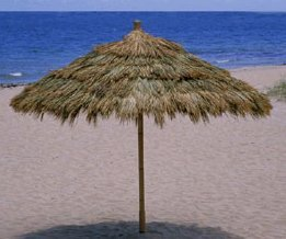 Tahiti Thatch Umbrella  2 Sizes Available