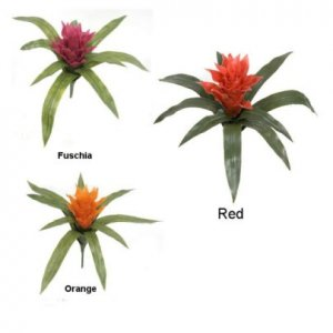 "14"" Tropical Polyblend All Weather Bromeliads come in Orange, Red, Yellow or Fuschia Colors"