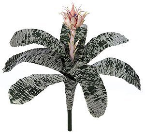 "Life Like 21"" Aechmea Bush"