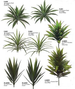 Life Like Dracaena Yucca Head Collection