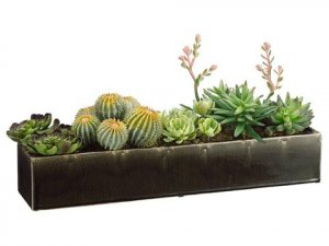 "EF-3816  	11'Hx8""Wx24""L Succulents in Long Ceramic Container Green"