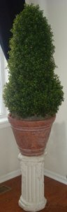"EF-922 4' Plastic Boxwood Cone Topiary - Natural Trunk - 4,336 Leaves - 34"" Cone Height"