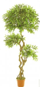 EF-8006 6.5' Outdoor Ficus Tree U.V. Stabilized (resists fading under sunlight).