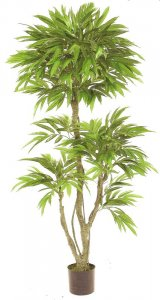 EF-8001 6' Outdoor Mango Tree UV Coated Leaves with pot shown.