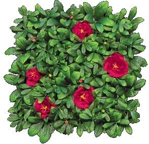 "EF-8513 Outdoor Artificial Red Flowering Azalea Mat- 12"" Squares"