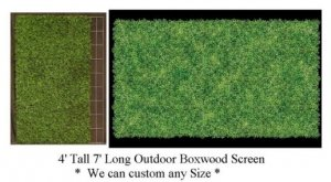 EF-1965 4' Tall 7' Long Outdoor Boxwood Screen