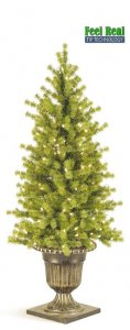 C-30240  4' TO 6' Ashland Spruce Entrance Tree Green with lights/urn as shown