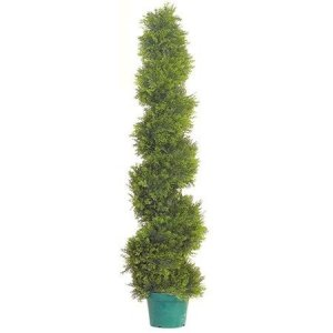 "EF-1585 5 foot Cedar Spiral Topiary 1500 Lvs 9"" Pot Indoor/Outdoor"