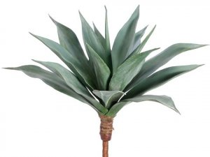 "EF-2013 25"" Natural Touch Large Agave  Frosted Green Indoor/Outdoor( 2pc Min order)"