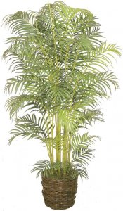 EF-3274 8' Areca Palm Synthetic Trunks  1,116 Leaves