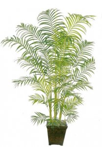 EF-3264 7' Areca Palm Synthetic Trunks 884 Leaves