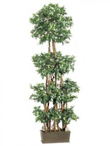 EF-LTF306-GR 6' Mini Silk Ficus Wall Tree in Decorative Wood Container