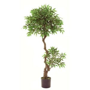 EF-8003 4.5 foot Outdoor  Mini Ficus Tree