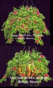 "EF-422 24"" *28"" Outdoor UV Rated Hanging Azalea Bush With 22"" & Chain Basket (Beauty,Cream or Pink)"