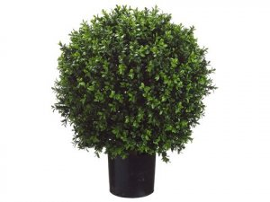 "EF-446 26""Tall 18"" Wide  Ball-Shaped Boxwood Topiary in Plastic Pot Green 18"" Wide Indoor/Outdoor"