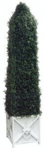 "EF-853 84"" Artificial Boxwood Cone Topiary with Planter Shown 7,650 Leaves"