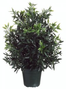 "EF-LPS230-GR 32""SKIMMIA BUSH (Price is for a 4 PC SET)"