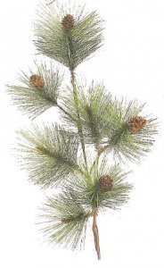 "EFR-38604 27"" PVC long Needle Pine Branch with Pine Cones (Sold per Dozen)"