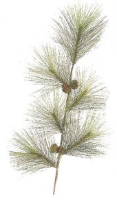"EFR-38606 30"" PVC long Needle Pine Branch with Pine Cones (Sold per Dozen)"