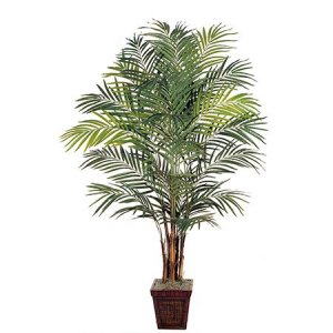 EF-4985  7' Giant Areca Palm Natural Trunks 676 Lvs