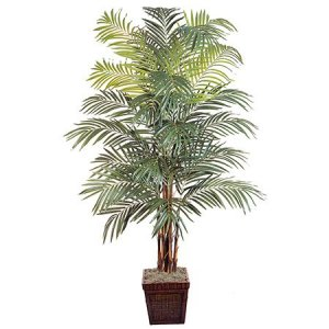 EF-4986 8' Giant Areca Palm Natural Trunks 792 Lvs