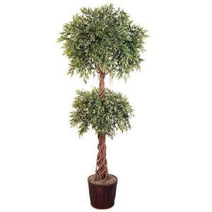 EF-1850 6' Ruscus Double Ball Topiary with Braided Soft Trunk 4462 Lvs