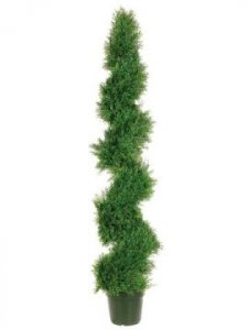 EF-552 5' Spiral Pond Cypress Topiary w/1492 Lvs. in Plastic Pot Green Indoor/Outdoor