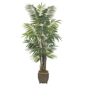 EF-1800   6' Areca Palm Tree  602 Lvs