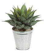 "A-80870 14"" x 11"" Agave Plant in Tin Pot - 38 Green Leaves with Red Edges"