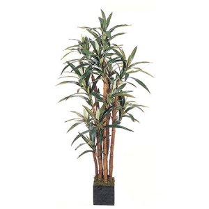 EF-5568 5' Yucca Dracaena Plant w/172 Lvs In Wooden Pot