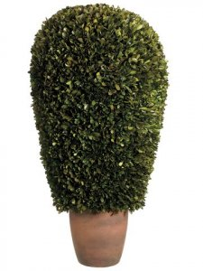 "EF-436 14""Dx30""H Preserved Boxwood Ball Topiary in Pot Green"